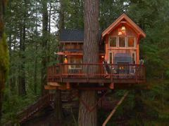 treehouse masters. Treehouse Masters R