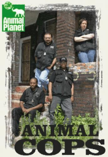 Animal Cops: Detroit next episode air date poster