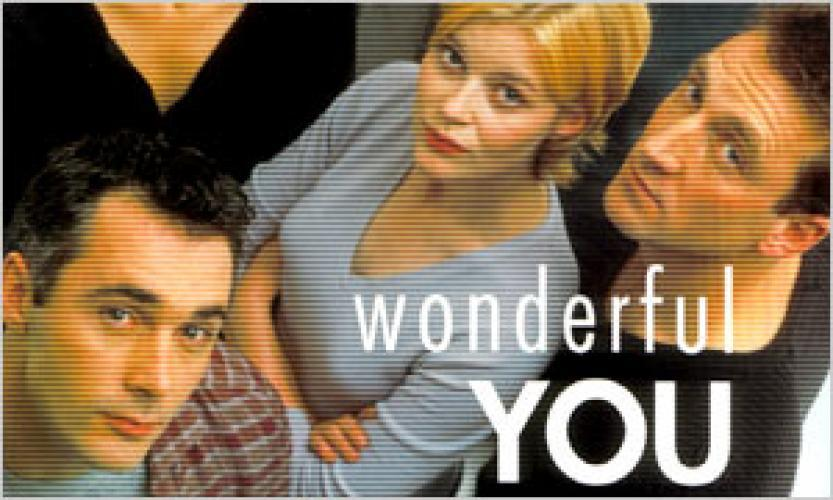 Wonderful You next episode air date poster