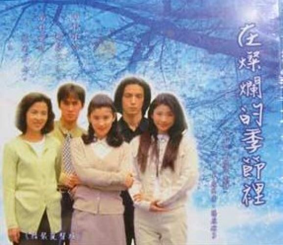 Kagayaku Toki no Naka de next episode air date poster
