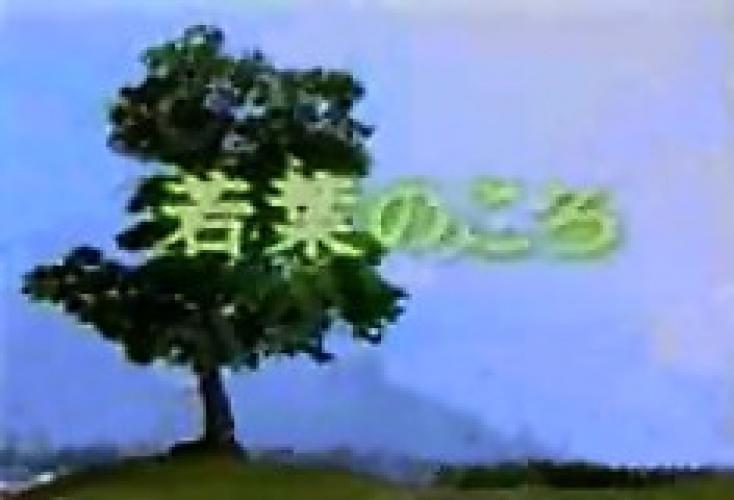 Wakaba no Koro next episode air date poster