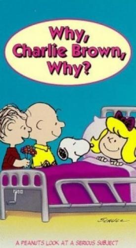 Why, Charlie Brown, Why? next episode air date poster
