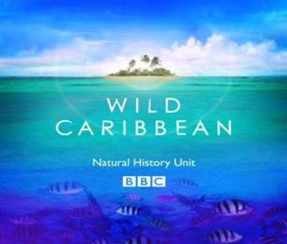 Wild Caribbean next episode air date poster