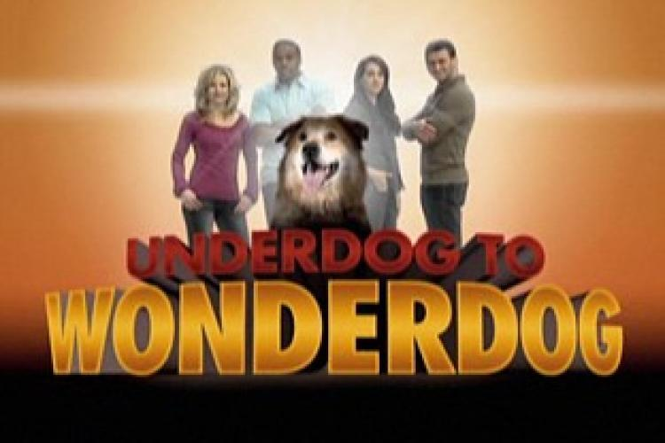 Underdog to Wonderdog next episode air date poster