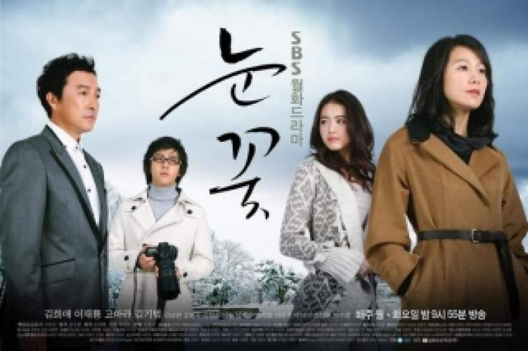 Snowflower next episode air date poster