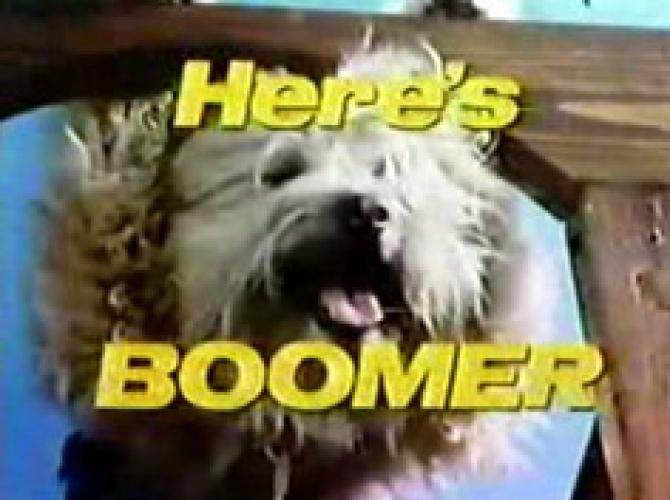 Here's Boomer next episode air date poster