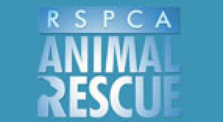 Animal Rescue next episode air date poster