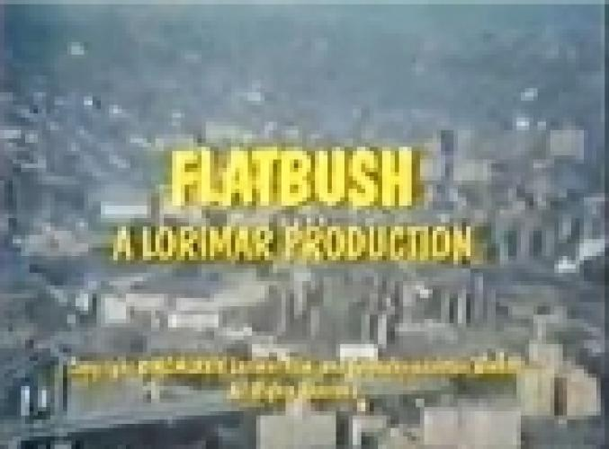 Flatbush next episode air date poster