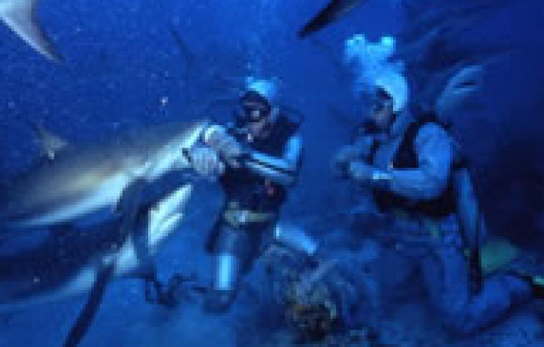 Nigel Marven's Shark Island next episode air date poster