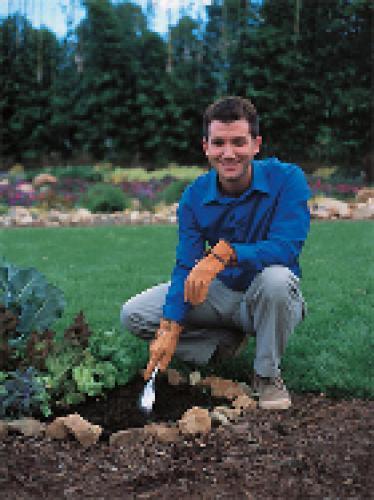 First Time Gardener next episode air date poster