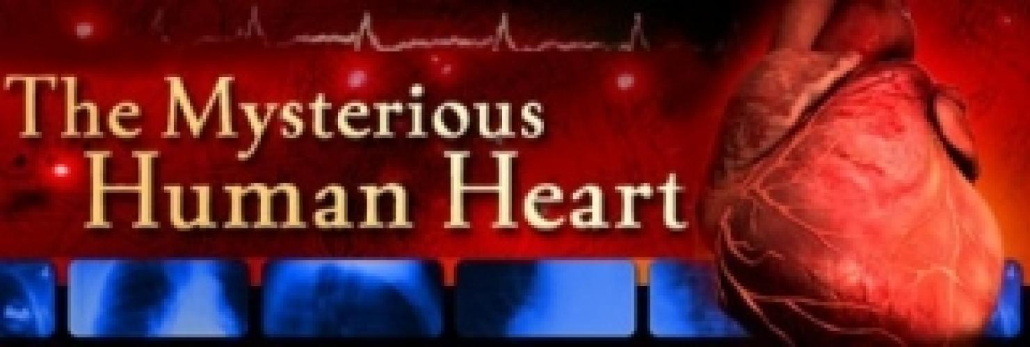 Mysterious Human Heart next episode air date poster