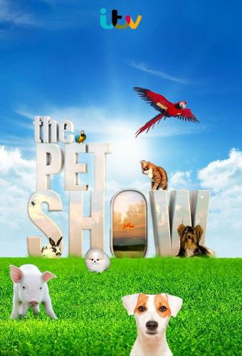 The Pet Show next episode air date poster