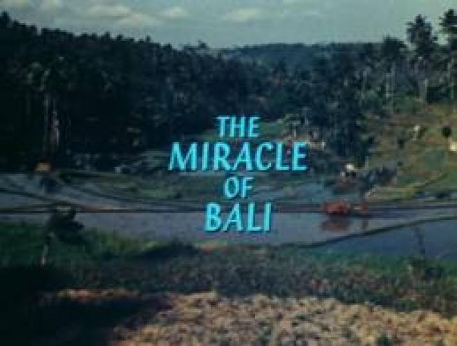 The Miracle Of Bali next episode air date poster