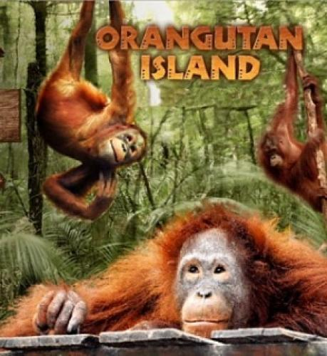 Orangutan Island next episode air date poster