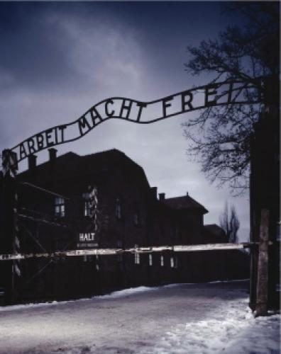 Auschwitz: The Nazis and the
