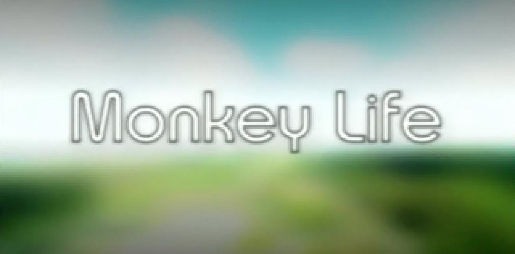 Monkey Life next episode air date poster