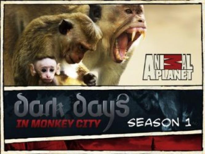Dark Days in Monkey City next episode air date poster