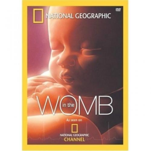 In the Womb next episode air date poster