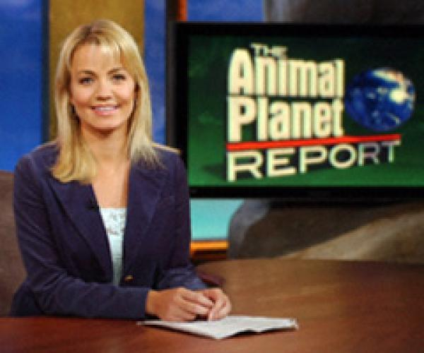 Animal Planet Report next episode air date poster