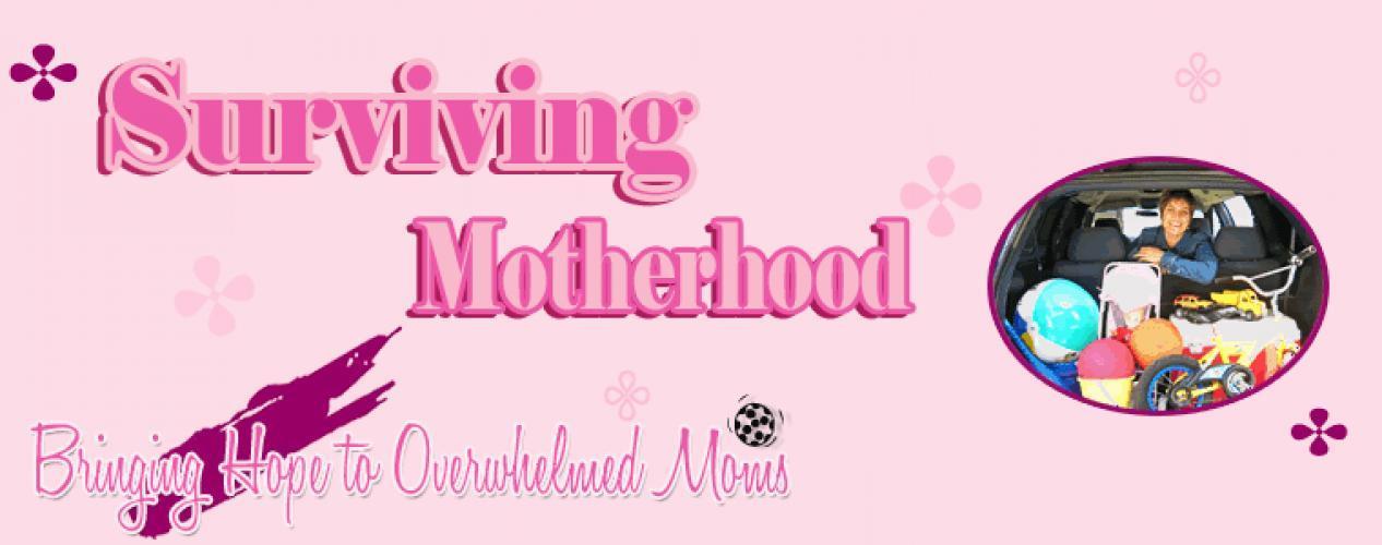Surviving Motherhood next episode air date poster