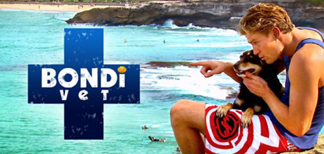 Bondi Vet next episode air date poster