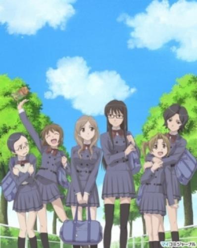 Sasameki Koto next episode air date poster