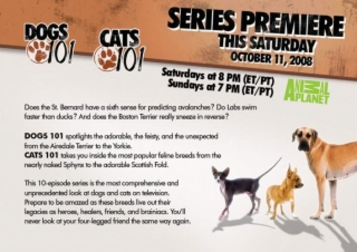 Dogs 101/Cats 101 next episode air date poster
