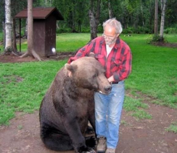 Bear Whisperer next episode air date poster