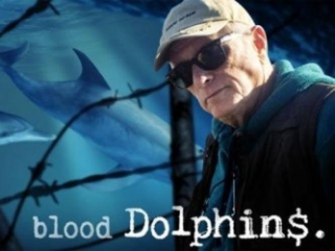 Blood Dolphins next episode air date poster