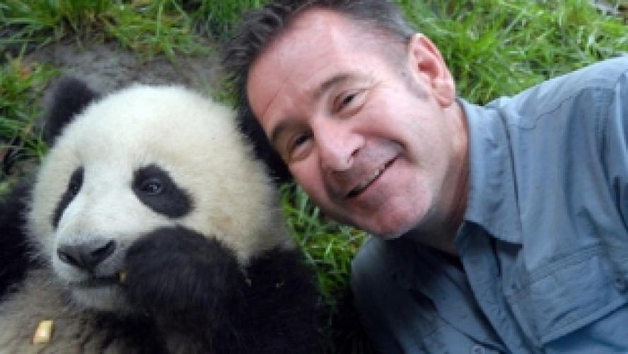 Panda Week with Nigel Marven next episode air date poster