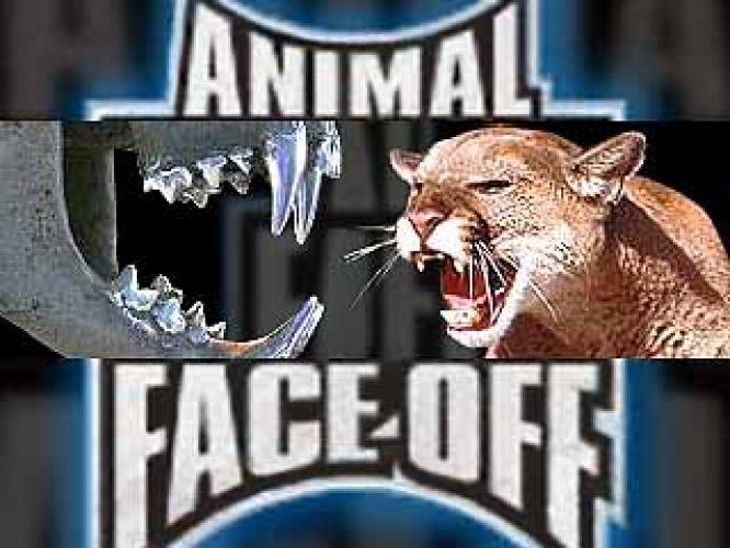 Animal Face-Off next episode air date poster