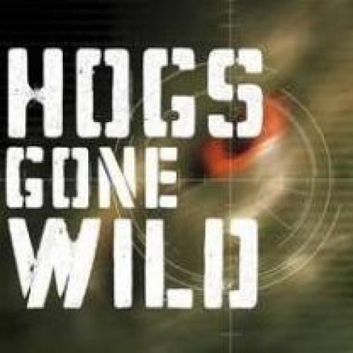 Hogs Gone Wild next episode air date poster