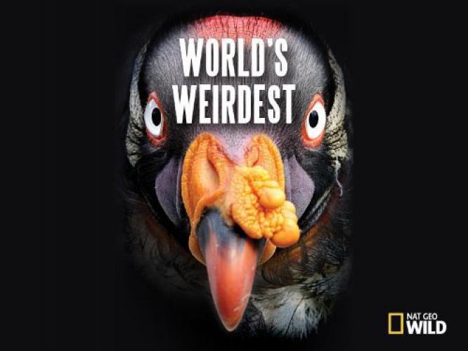 World's Weirdest next episode air date poster