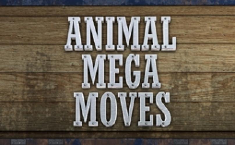 Animal Mega Moves next episode air date poster