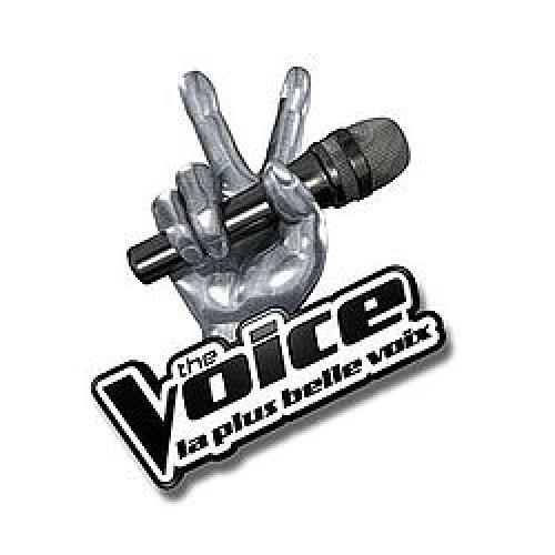 The Voice: La Plus Belle Voix next episode air date poster