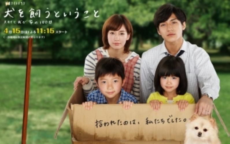 Inu o Kau to Iu Koto next episode air date poster