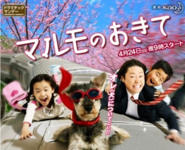 Marumo no Okite next episode air date poster
