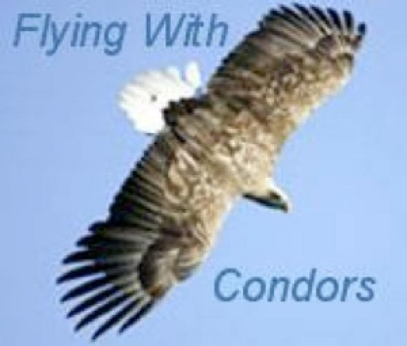 Flying with Condors next episode air date poster