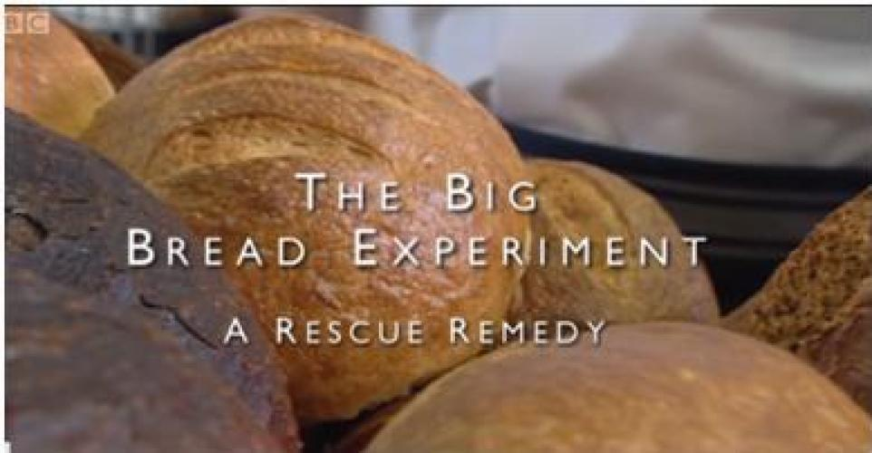 The Big Bread Experiment next episode air date poster