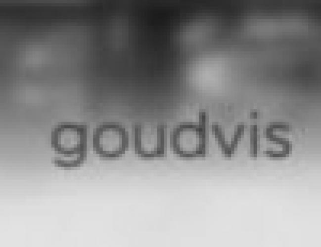 Goudvis next episode air date poster
