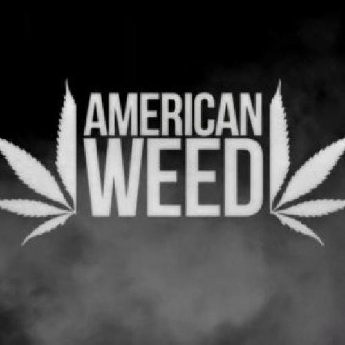 American Weed next episode air date poster