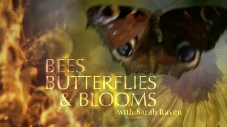 Bees, Butterflies and Blooms next episode air date poster