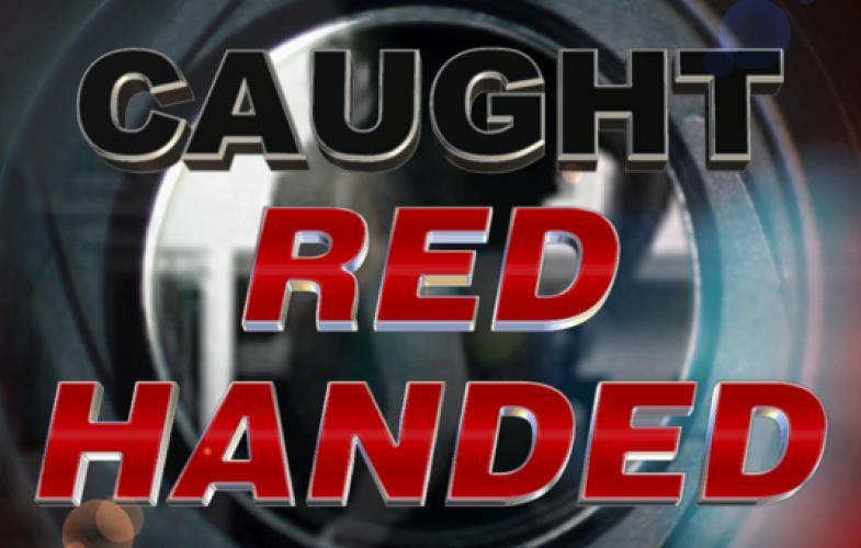 Caught Red Handed next episode air date poster