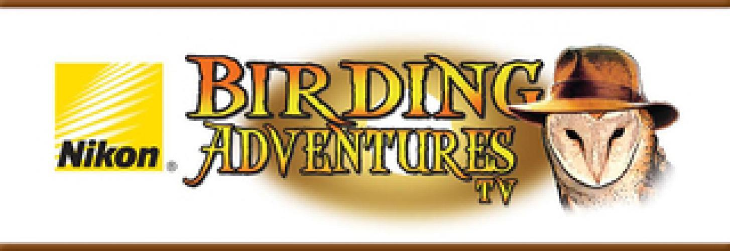 Birding Adventures next episode air date poster