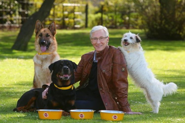 Paul O'Grady: For the Love of Dogs next episode air date poster