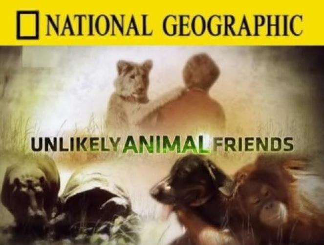 Unlikely Animal Friends next episode air date poster