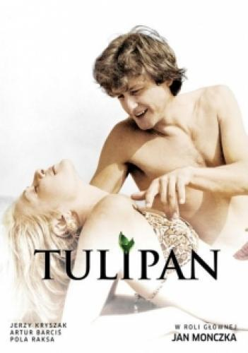 Tulipan next episode air date poster