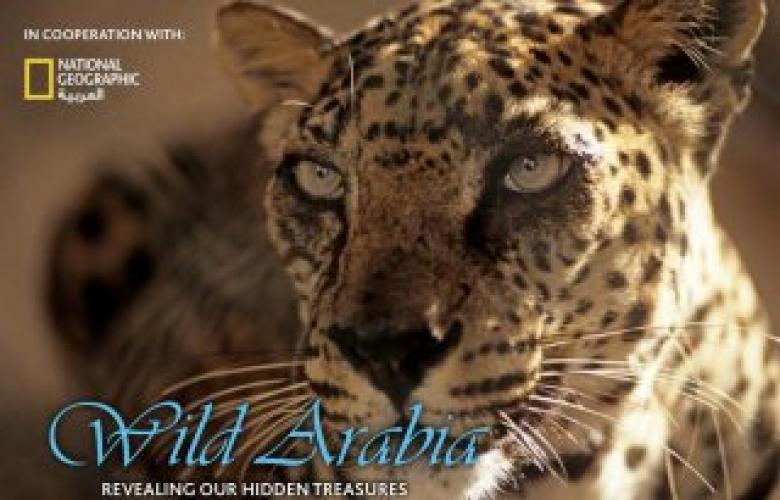 Wild Arabia next episode air date poster