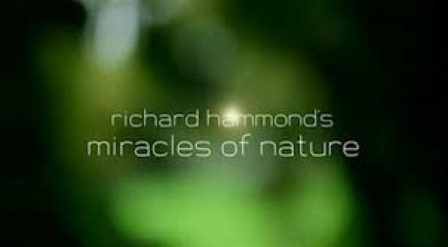 Richard Hammond's Miracles Of Nature next episode air date poster