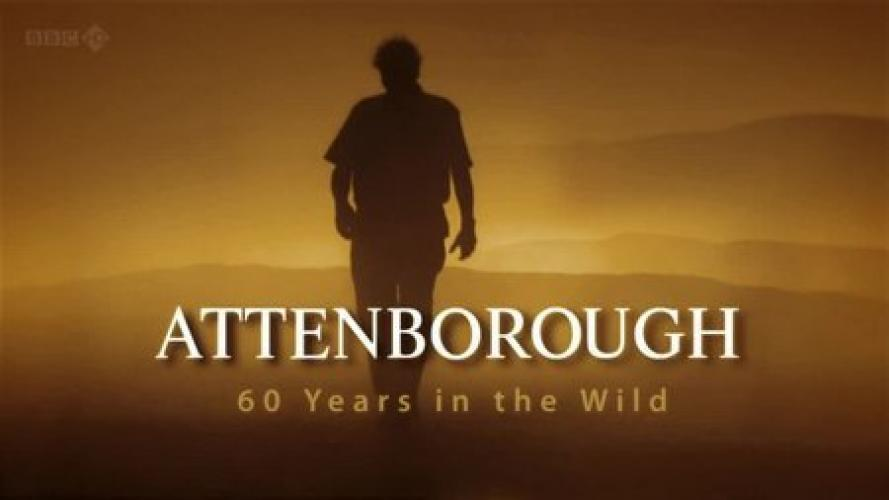 Attenborough: 60 Years In The Wild next episode air date poster